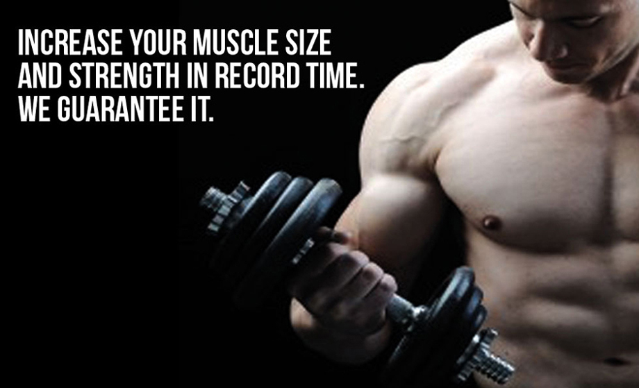 Increase your muscle size